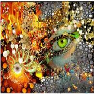 abstract image of soulmate eyes